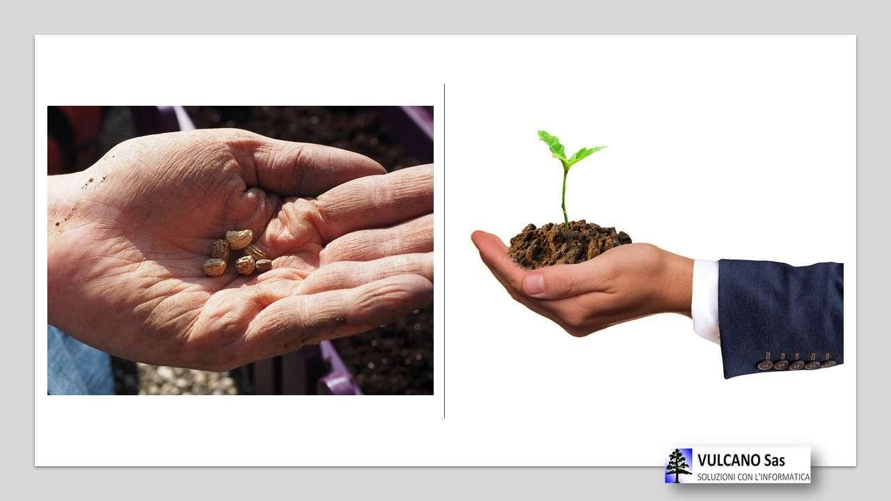 chi semina raccoglie